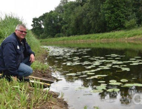 NLWKN begrenzt am Grasdorfer Wehr Wasserstand der Vechte